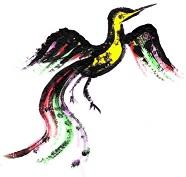 bird-logo-final-color-md-50