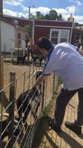 Got his goat!